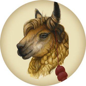 Llama-sketch