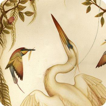 White_heron_detail_1