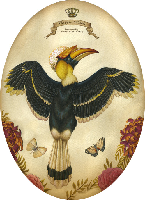Great_hornbill_scan